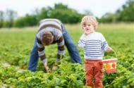 Kids may be exposed to pesticides at day care