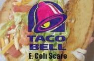 E. coli believed found in city