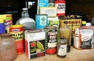 Pesticides Linked To Cancer In Children