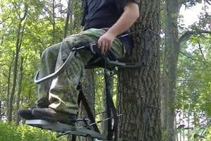 Gander Mountain Tree Stands