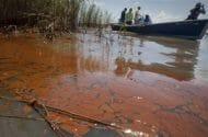 BP Unprepared for Gulf of Mexico Oil Spill