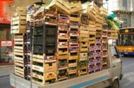 Organic Food Recalls on the Rise, Report Says