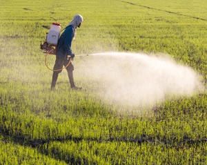 Monsanto's Roundup Herbicide Linked to Leukemia, Lymphoma