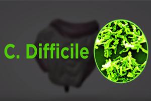 C. Diff Drug Resistant