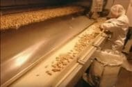 Use of Private Inspectors Tied to Peanut Corp. Illnesses