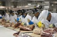 USDA Pressured by Industry to Scale Back Hallmark/Westland Beef Recall