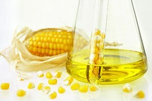 Genetically Modified Organism Research Sought Due To Corn