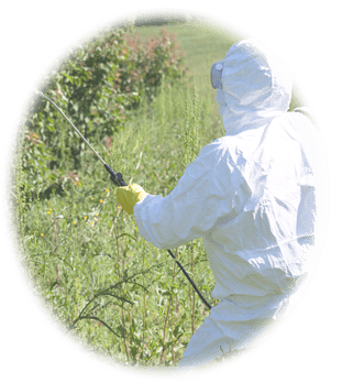 A person in protective gear sprays Roundup on a field. Injuries due to regular use of Roundup can be grounds for a class-action suit.