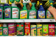 Roundup Non-Hodgkin's Lymphoma Cancer Lawsuits