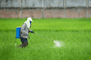 Dangerous Pesticides