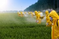 Monsanto Loses Lawsuit Alleging that the Company Hid Impact of Pesticides