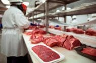 JBS Tolleson Beef Salmonella Contamination