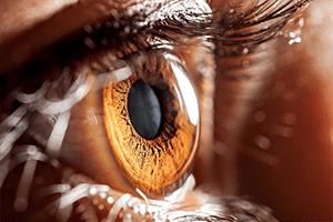 Ocusoft eye products recalled