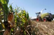 Monsanto Fights California Cancer Designation for Roundup