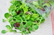 FDA Recalls Bagged Salad Due to Parasite, 100 Sickened in 7 States