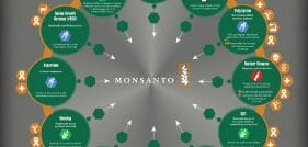 Monsanto's Dirty Dozen: The Effects These 12 Dangerous Products Have Had on the World