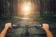 Bicycle handlebar impalement injury lawsuit lawyers